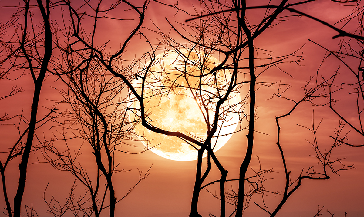 12 Things You Need to Know About the Harvest Full Moon