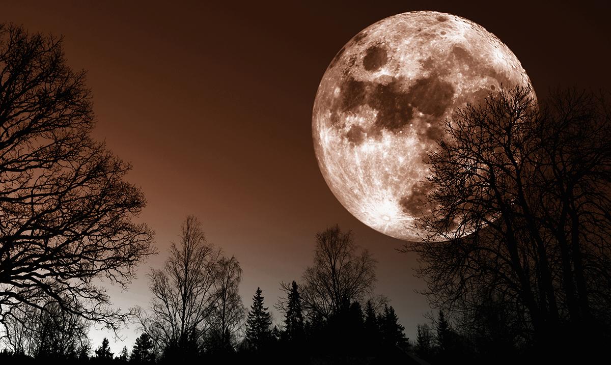 Full Moon in Taurus November 4th: Look Forward to Heightened Psychic Awareness