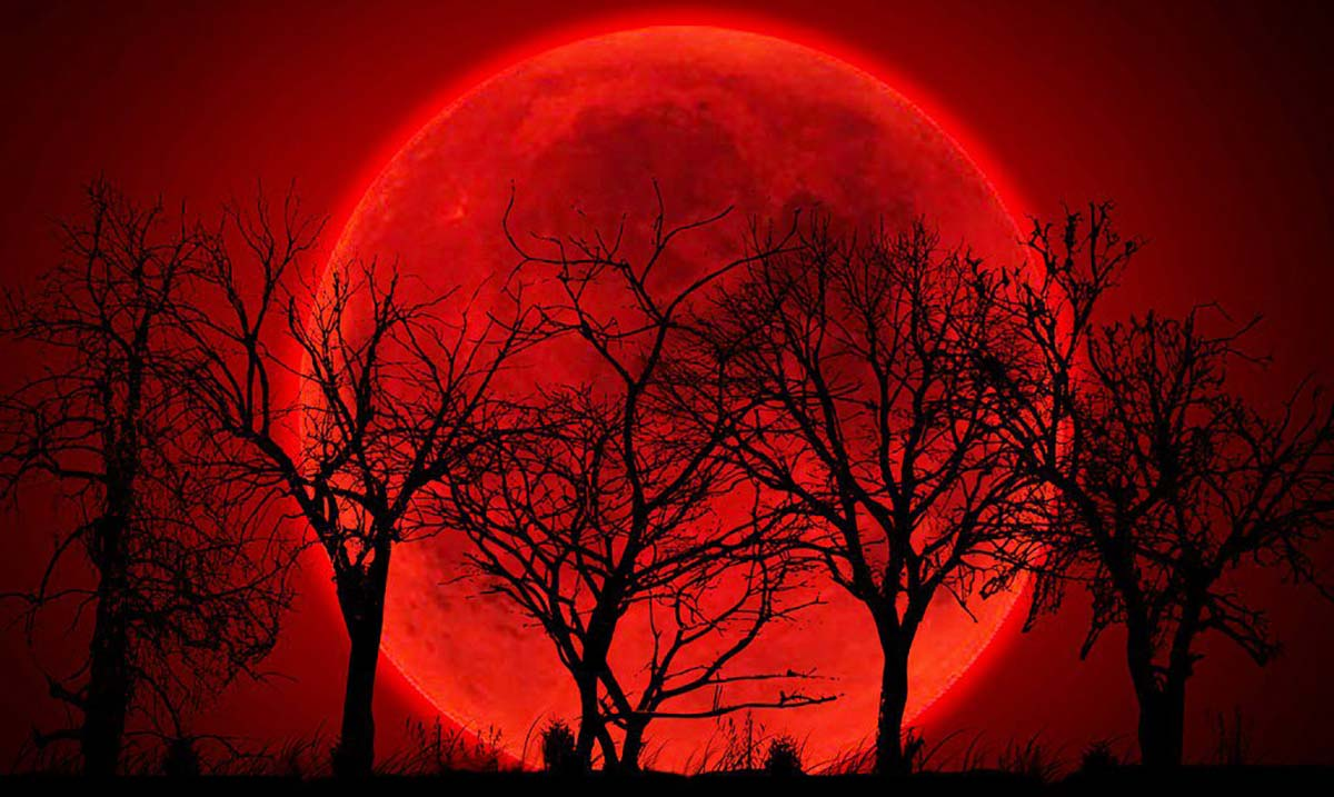 wolf blood moon meaning astrology - photo #12