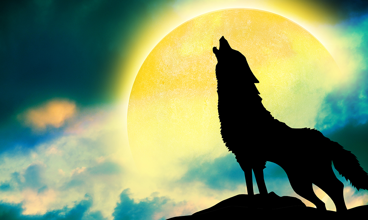 January Full Wolf Moon: A Time of Forgiveness and Transformation