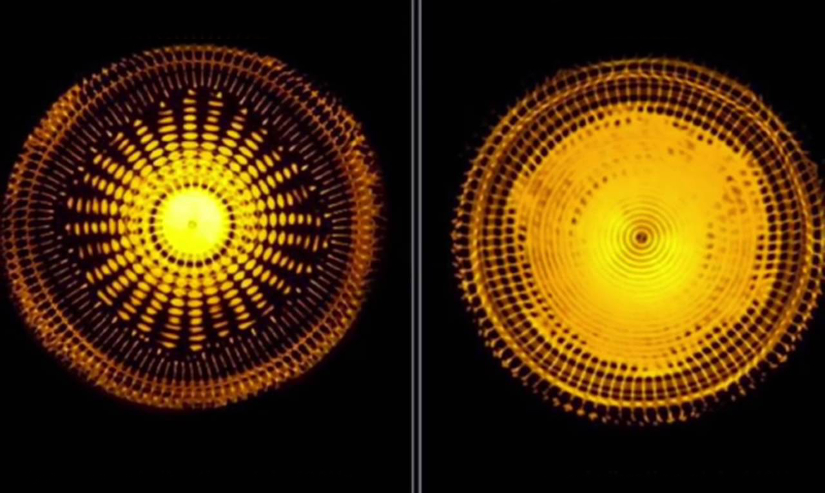 440 Hz VS 432 Hz: The Hidden Power Of Universal Vibration And Frequency