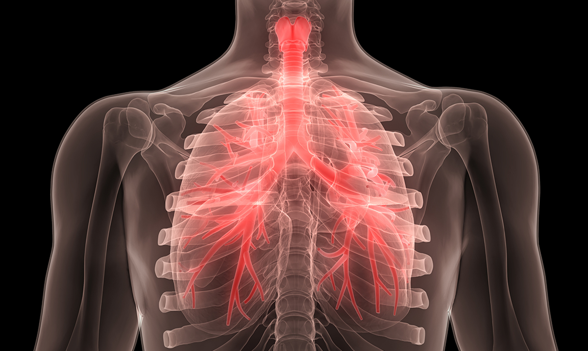 The Amazing Things That Happen to Your Lungs When You Use Essential Oils