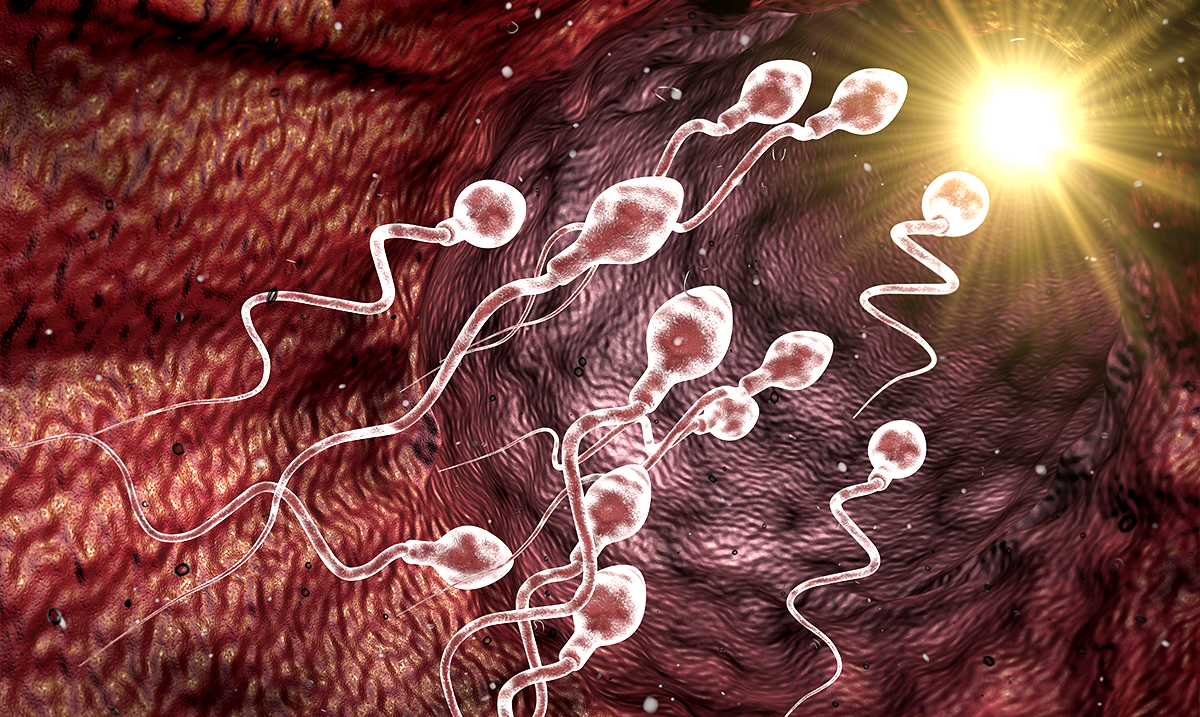 Recent Study Proves That Ibuprofen is Directly Linked to Male Infertility