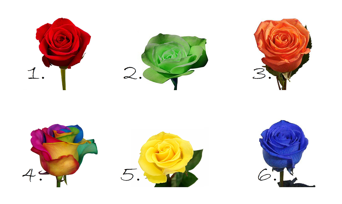 The Rose You Choose Will Reveal Beautiful Secrets About Your Personality