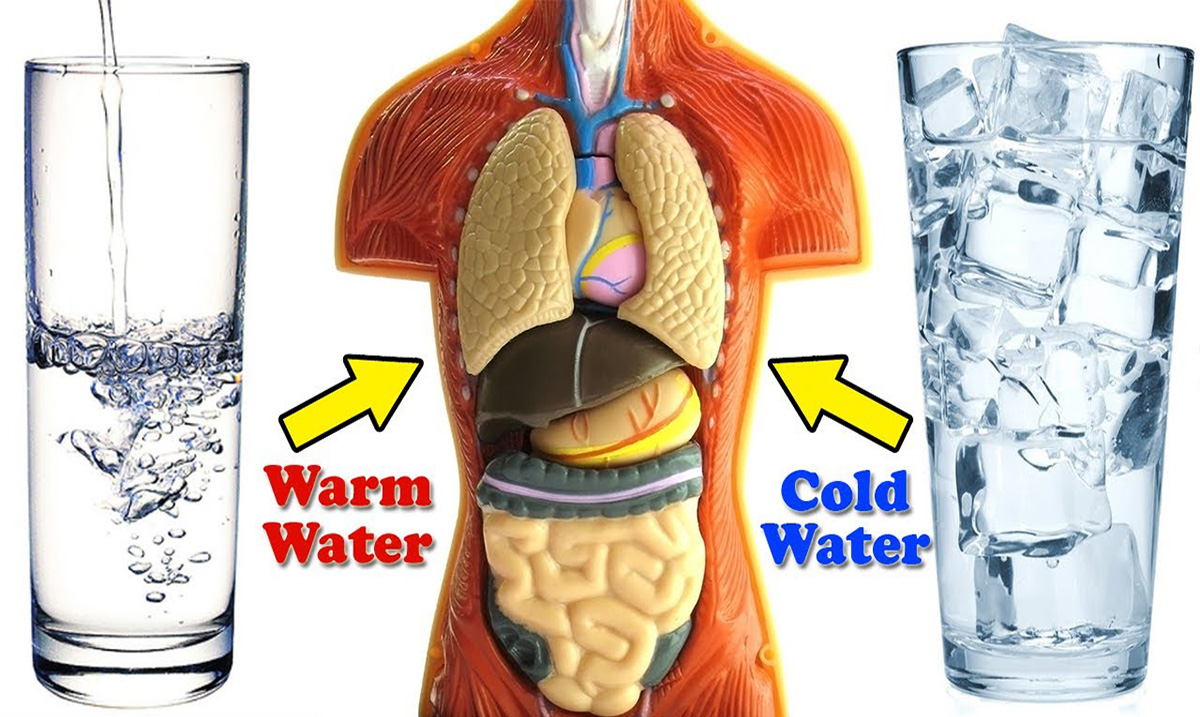 Warm Water Vs. Cold Water: Which is Secretly Damaging Your Health?