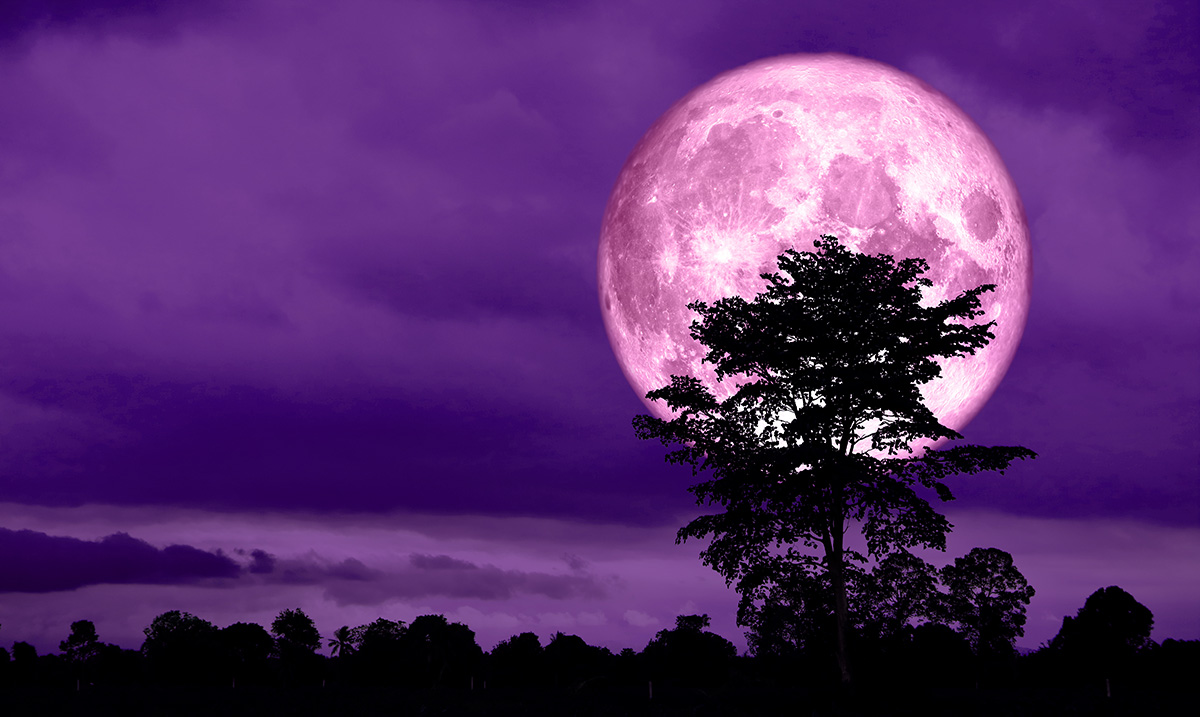 The Surprising Impact the Full Moon Has on Your Relationships at All Levels