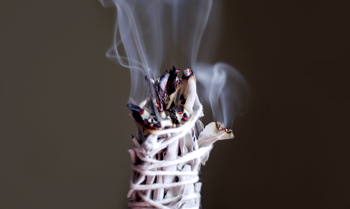 9 Magical 'Sacred Herbs' and Why You Should Choose Each One For Smudging