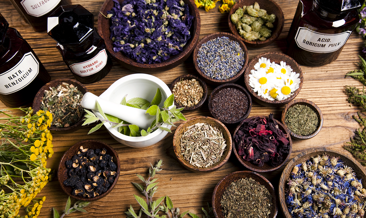 13 Sacred Plants, Herbs And Spices For Prosperity And Protection