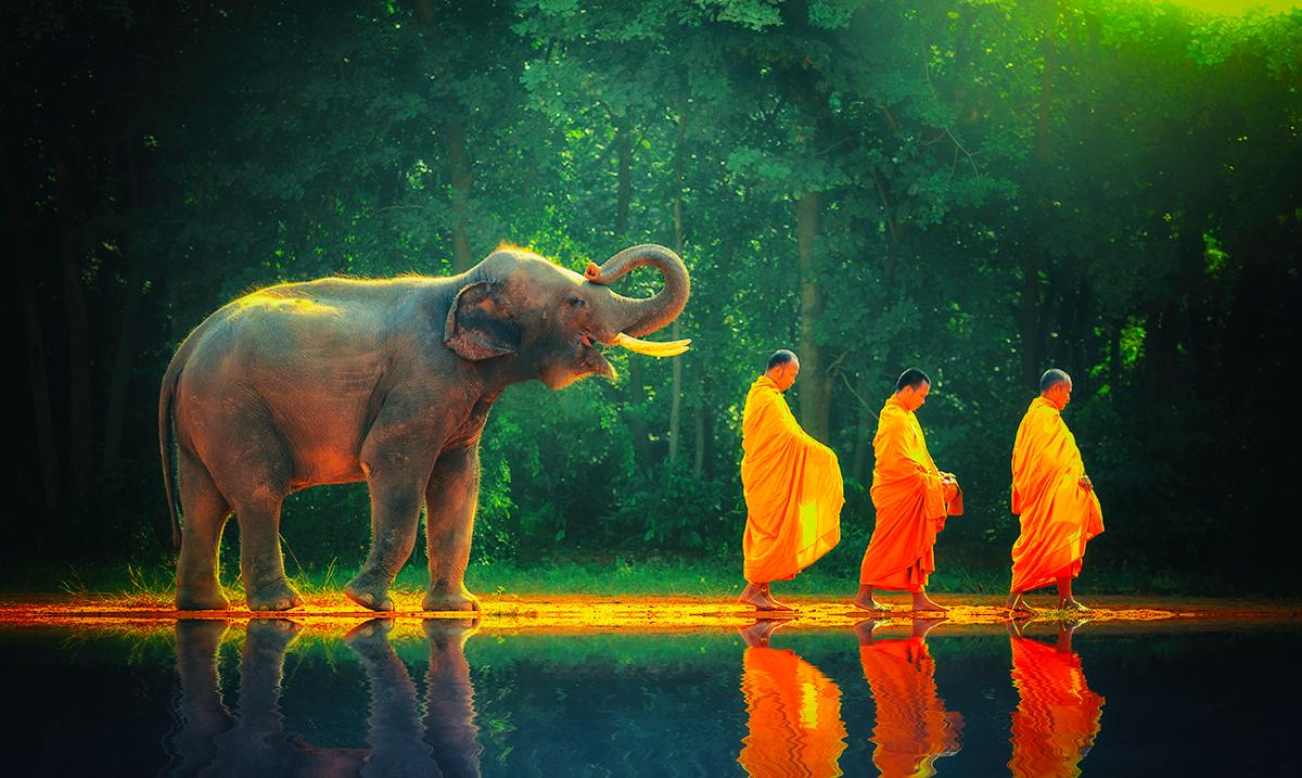 7 Advantages of 'Walking Meditation'