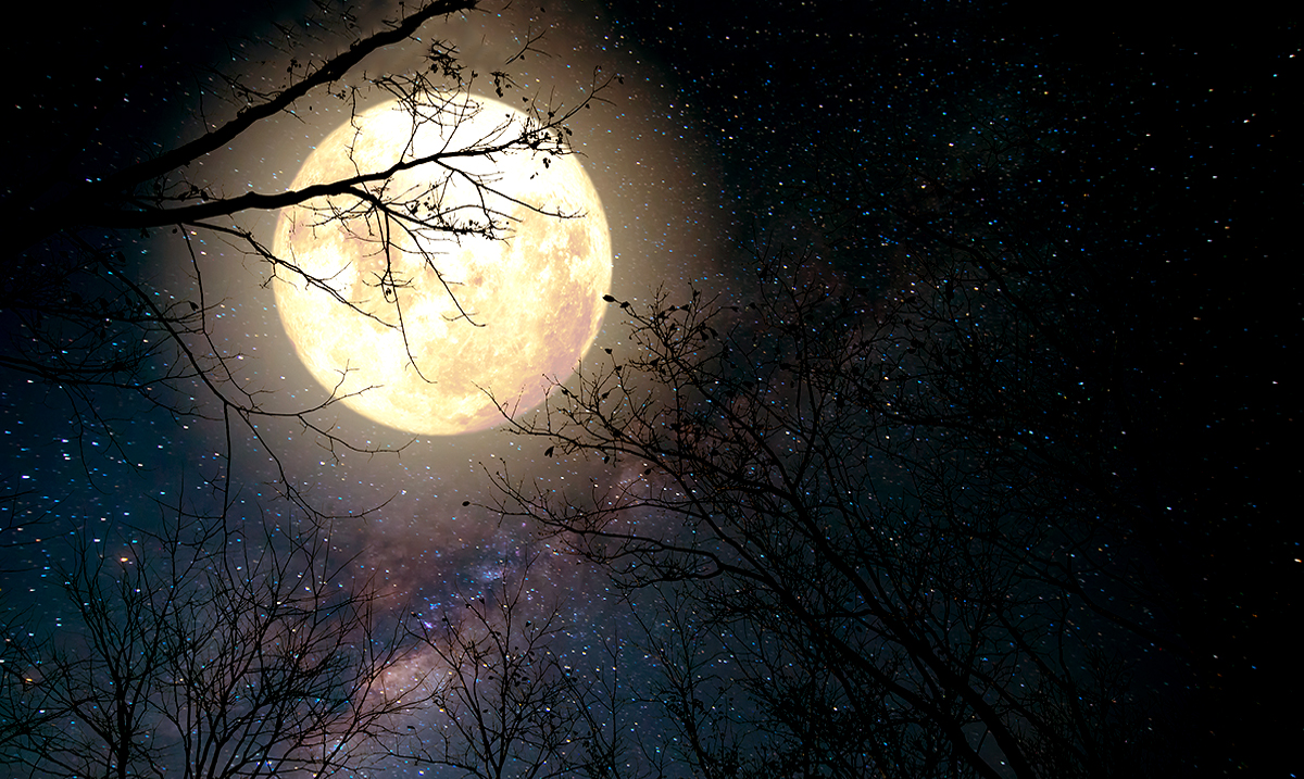 The One Thing Missing In Your Life, According To Your October Full Moon Horoscope