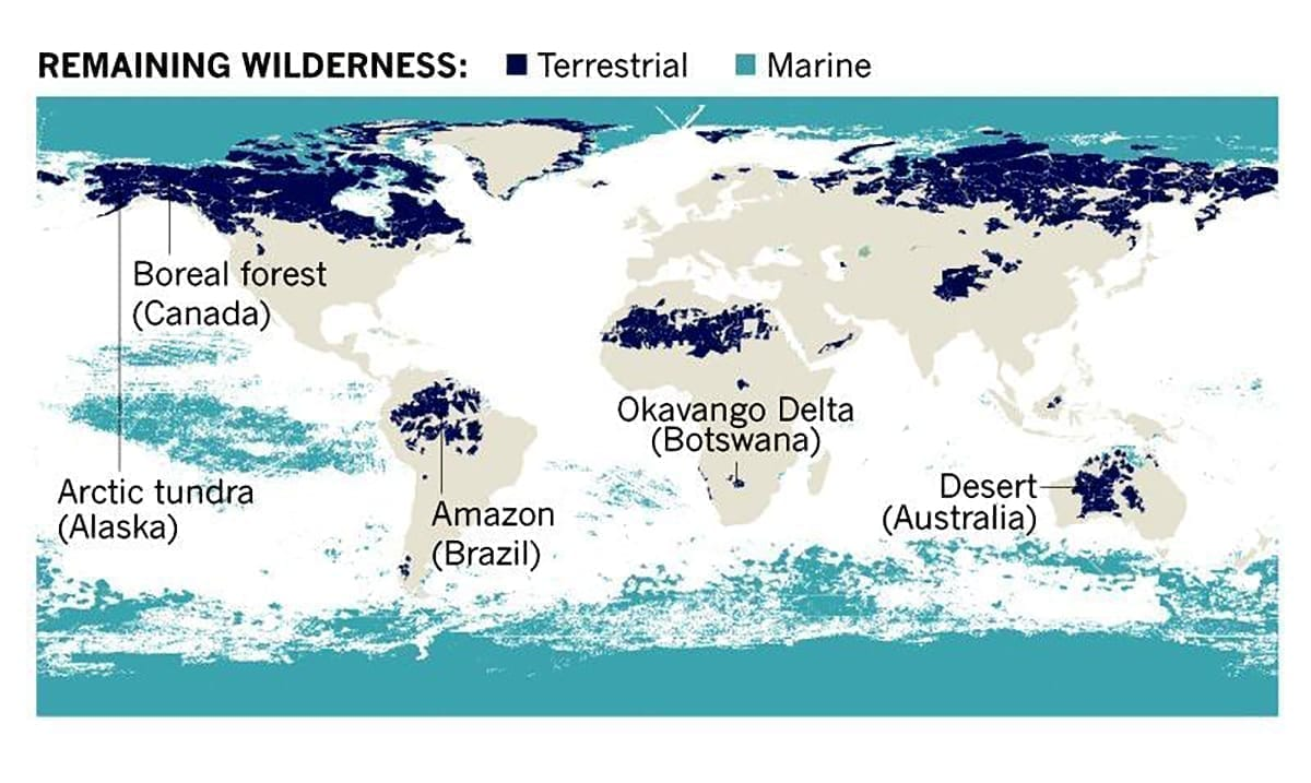 70% of the World's Remaining Wilderness Can Be Found in Just 5 Countries!