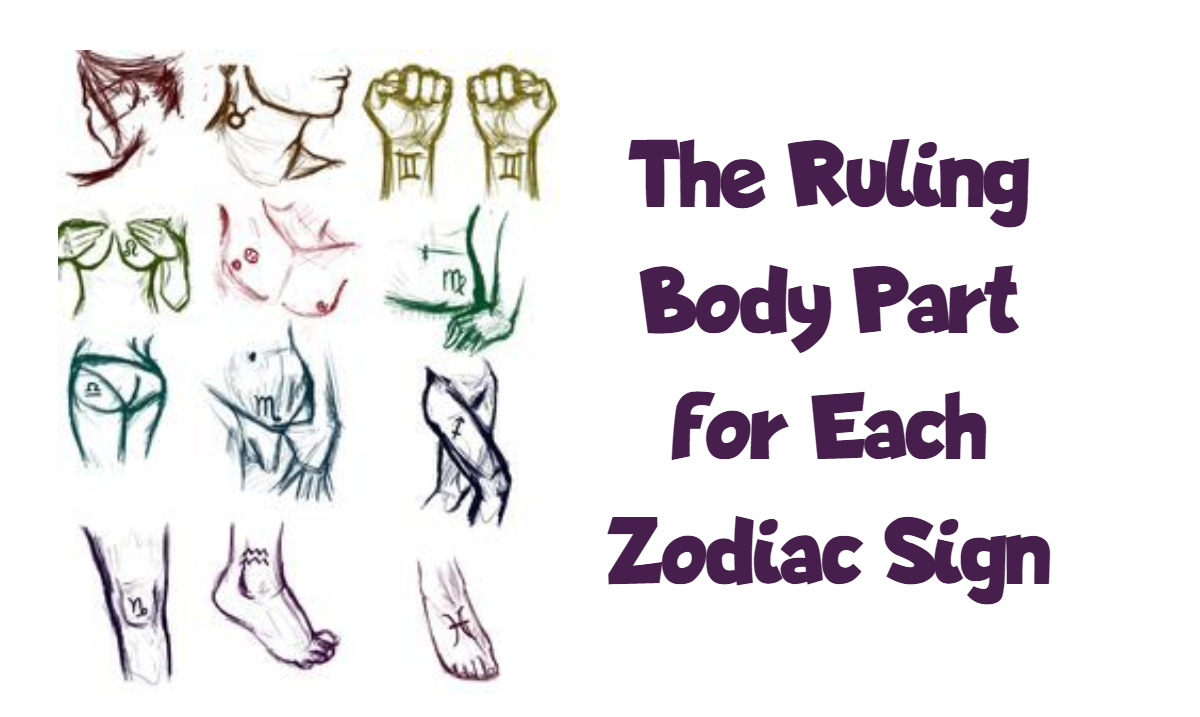 The Ruling Body Part For Each Zodiac Sign