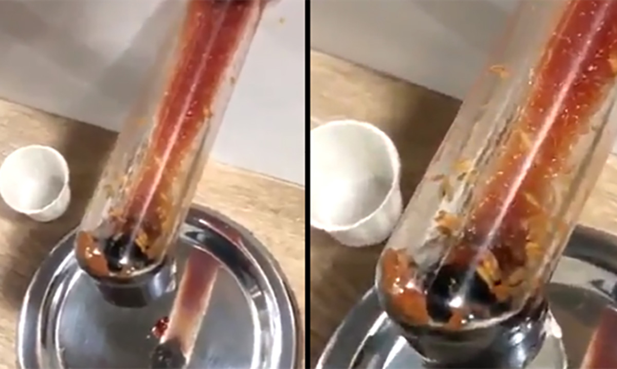 Video Reveals Live Maggots Inside A McDonald's Ketchup Dispenser
