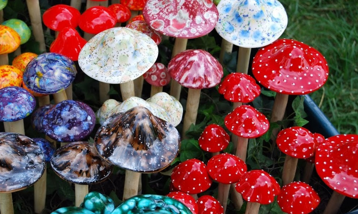 Several States Are Now Working To Legalize Psychedelic Mushrooms