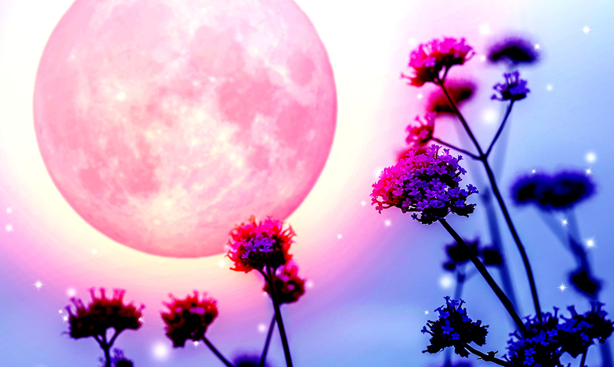 Full Flower Moon May 18th: Let Go Of Your Fears And Move On