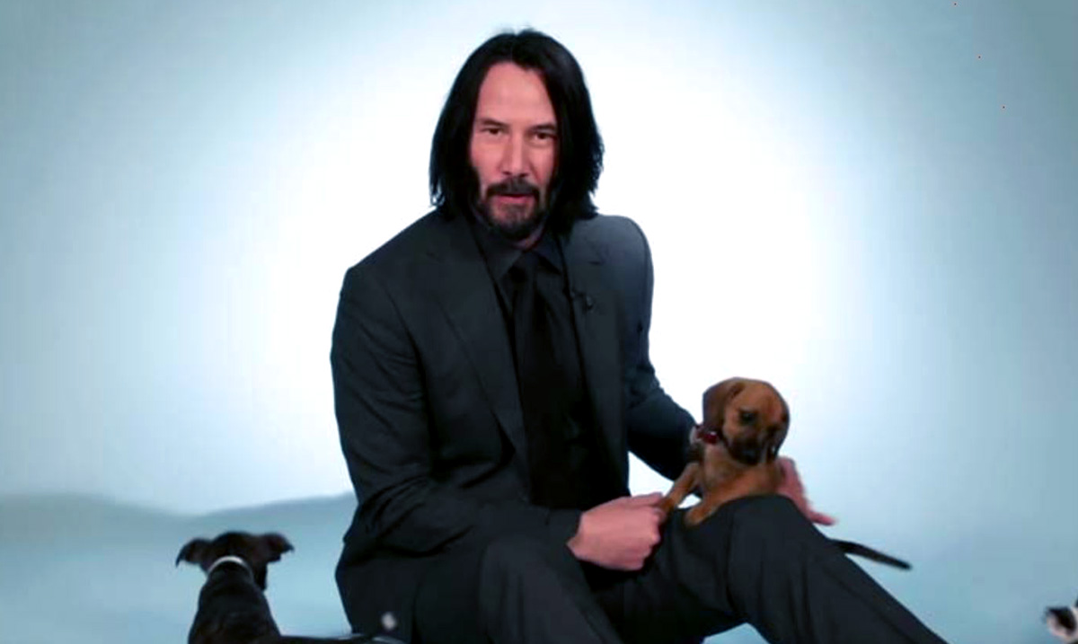 This Video of Keanu Reeves Playing With Puppies Is Our New Obsession