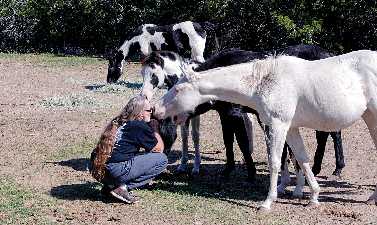 Willie Nelson Rescued Over 60 Horses From A Slaughterhouse And Made His Ranch Their Home