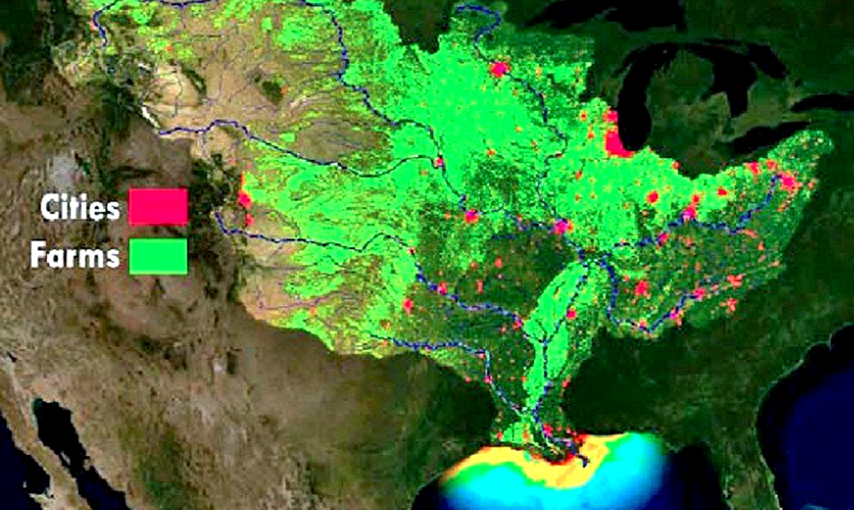 Near Record Death Zone Has Been Predicted For The Gulf Of Mexico
