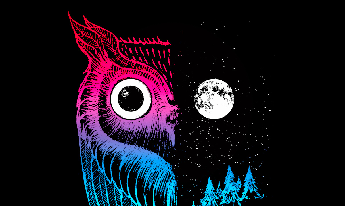 Night Owls Rejoice! Science Finds Night Owls Are More Intelligent