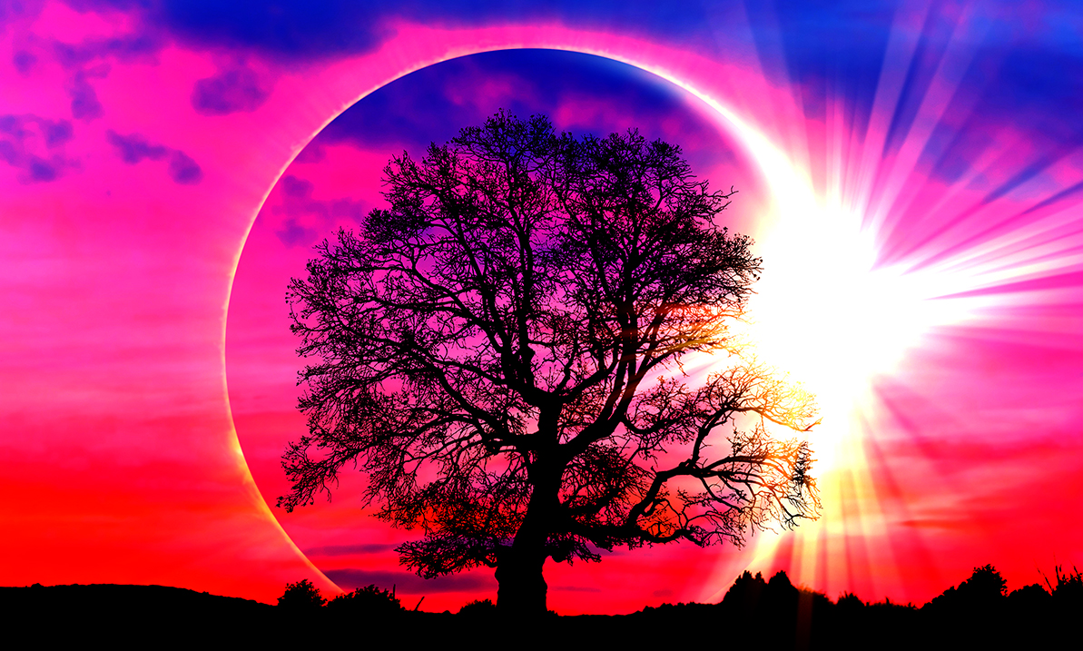 The July Solar Eclipse Is Bringing The Heart Transformation We All Need