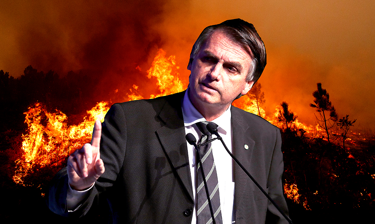 Leaked Documents Say The President Of Brazil Might Be Working To Destroy The Rainforest