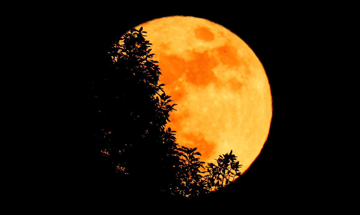 A Rare Full Harvest 'Micromoon' Will Make For An Extra Eerie Friday The 13th