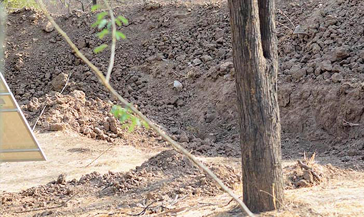 There is A Leopard In This Picture And The Internet Has Gone Crazy Trying To Find It