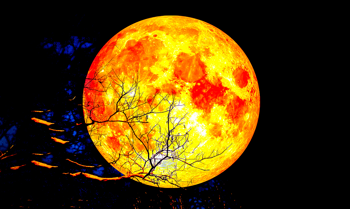 The Full Hunter's Moon In Aries On October 13th Will Bring Forth Intense Life Changing Opportunities