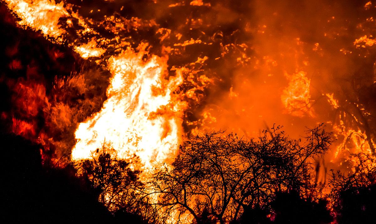 California Faces Serious Red Flag Warning As Hurricane Santa Ana Winds Blast Through