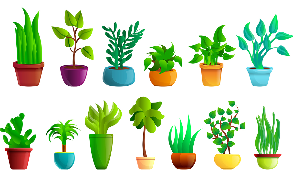 Research Suggests Your House Plants Aren't Actually Cleansing The Air In Your Home