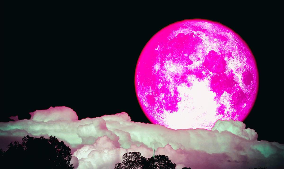 The Last Full Moon Of 2019 Will Bring Forth An Energy That Frees Us All 12/12