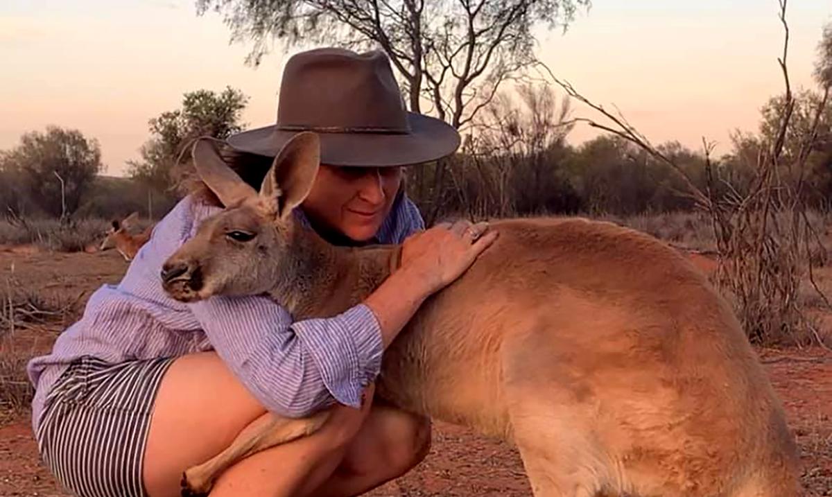 Rescued Kangaroo Loves To Hug Those Who Saved Her Life