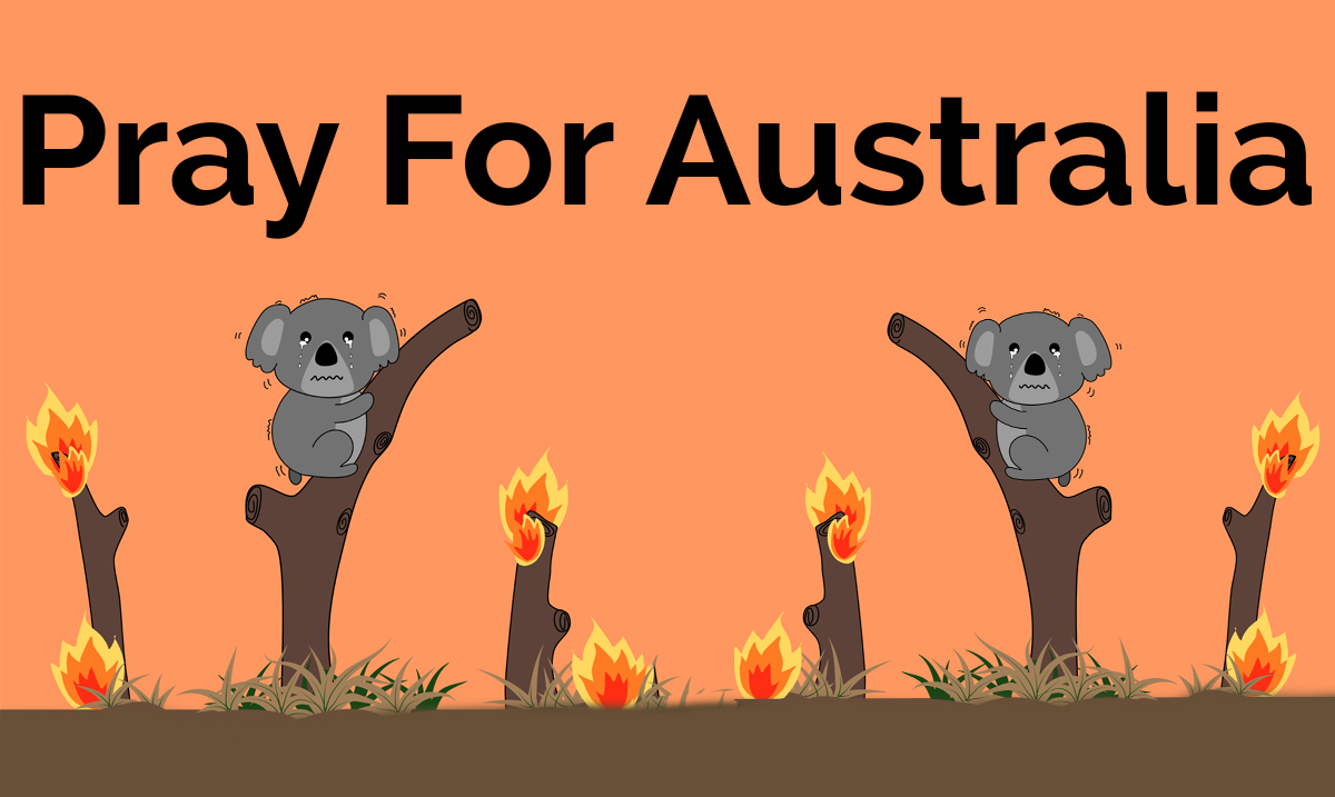 Australian Bushfires Are Estimated To Have Have killed Around 500 Million Animals So Far