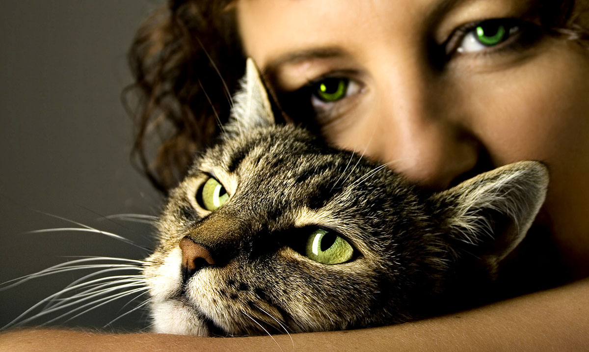 Introverts And Their Connections With Animals – Little Known Truths