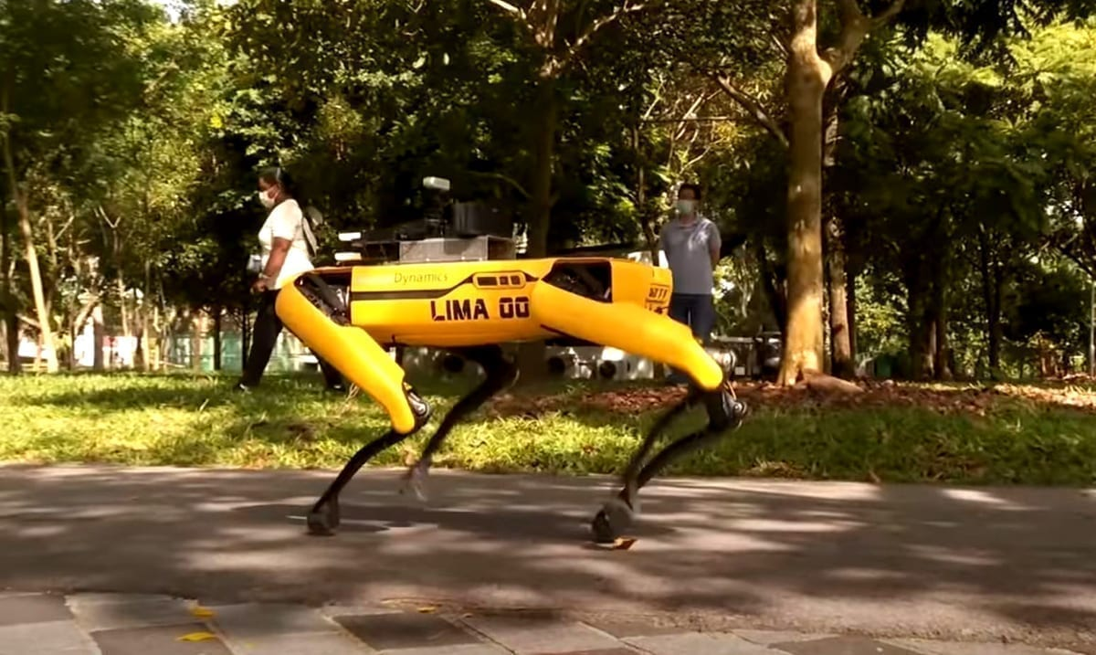 Robot Dogs Are Reminding Those In Singapore To Social Distance