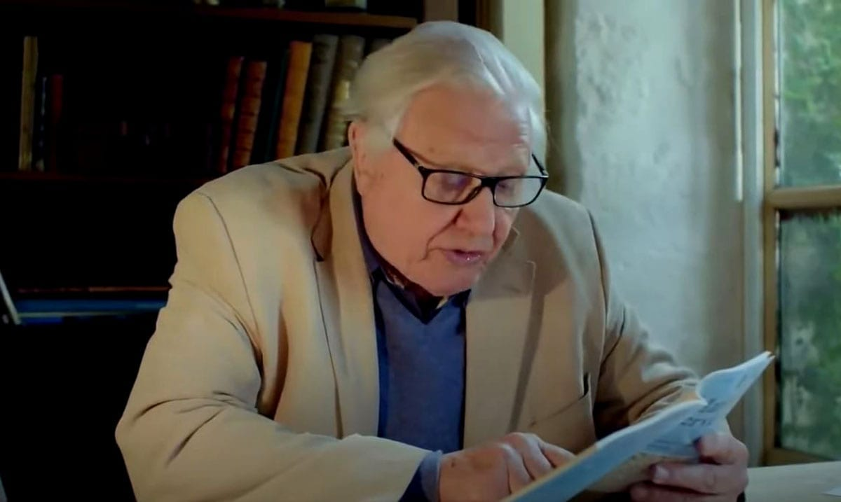 Sir David Attenborough Said 'Humans Are A Plague On Earth' And His Words Were True