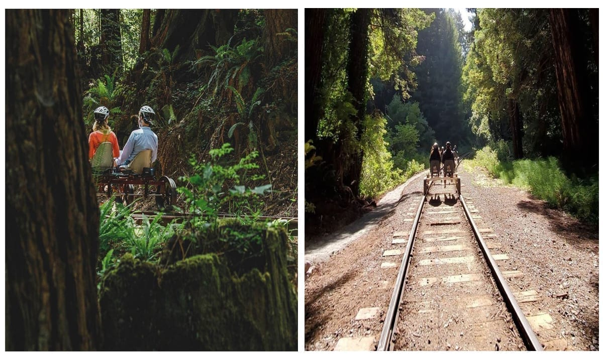 You Can Now Pedal Through The Redwood Forest Using Rail Bikes