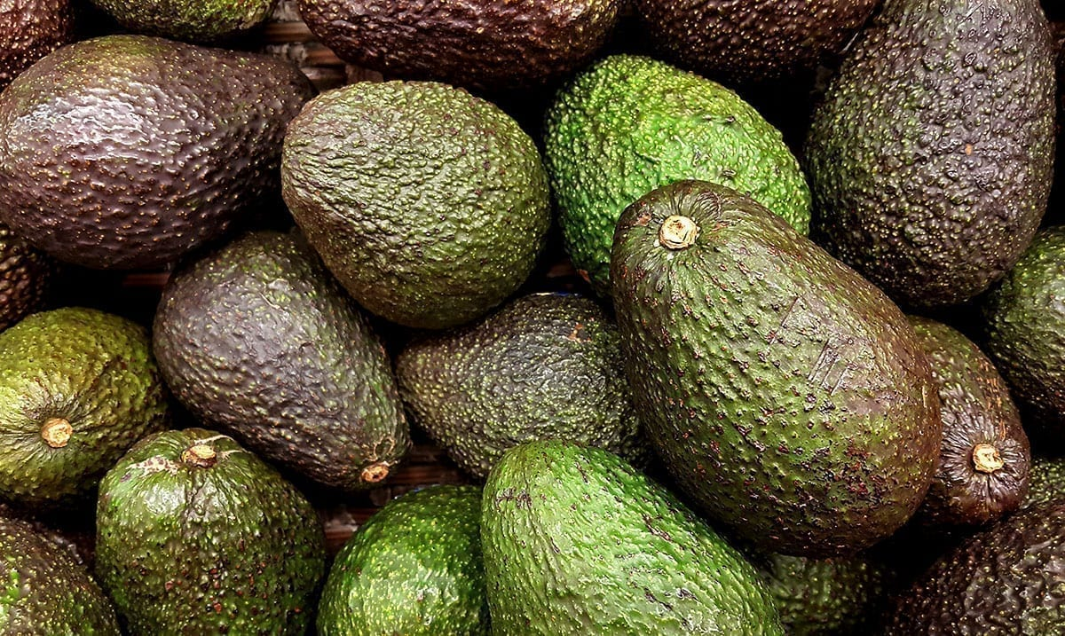 Viral TikTok Hack Breaks Down Simple Way To Stop Avocados From Going Brown