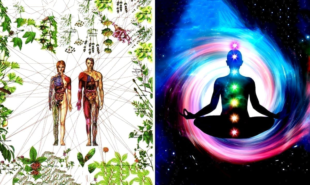 Healing The Seven Chakras With Herbs