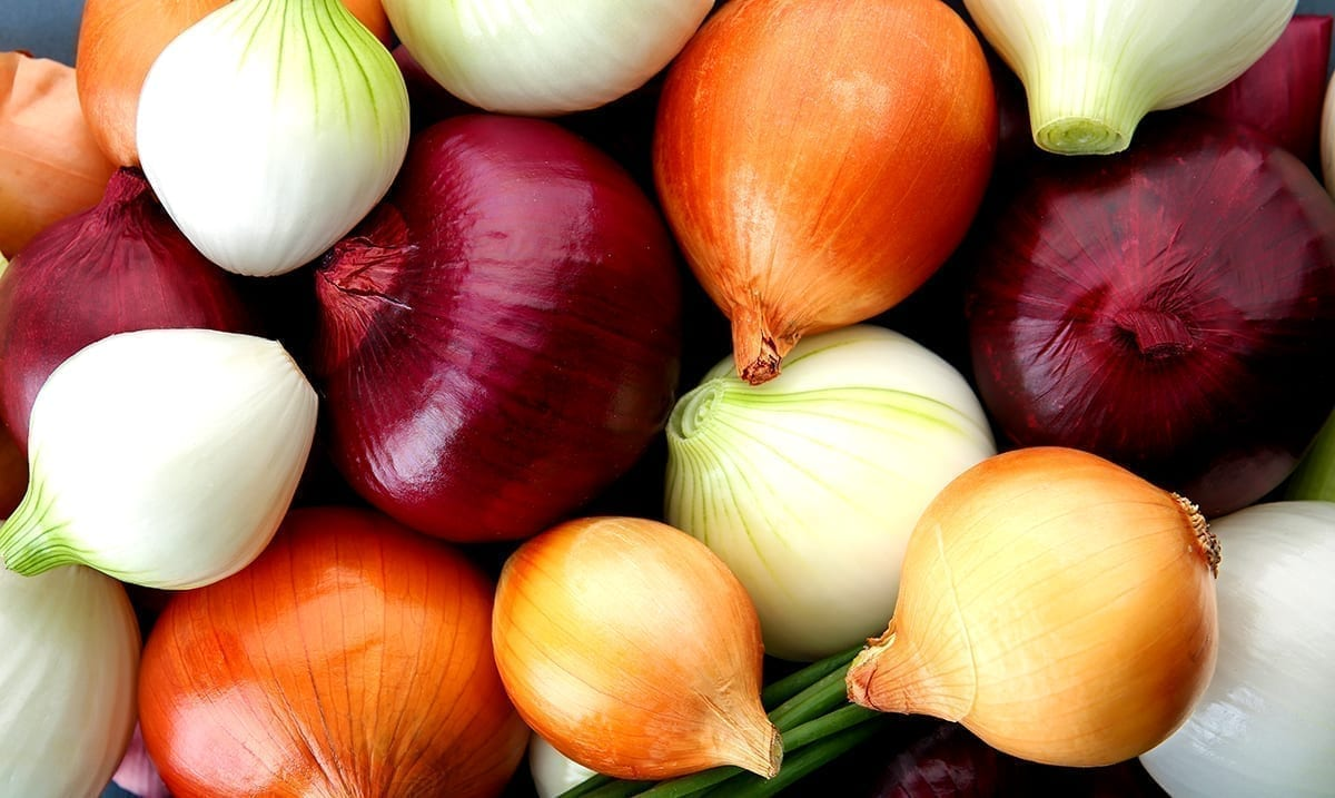 Salmonella Outbreak Linked To Onions Affects At Least 47 States