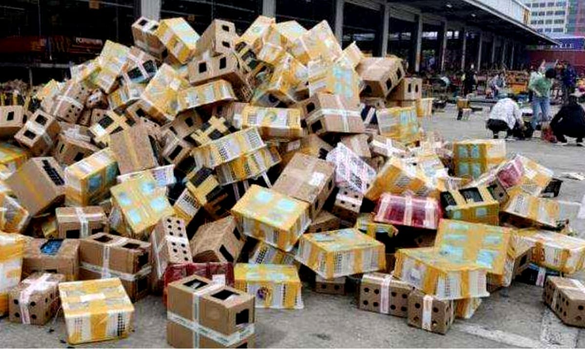 Thousands Of Pets Found Dead In 'Cardboard Shipping Boxes' At Chinese Logistics Facility