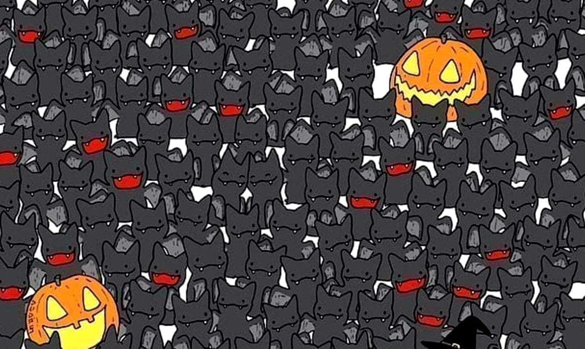 Can You Spot The Cat Hiding Amongst All These Bats?