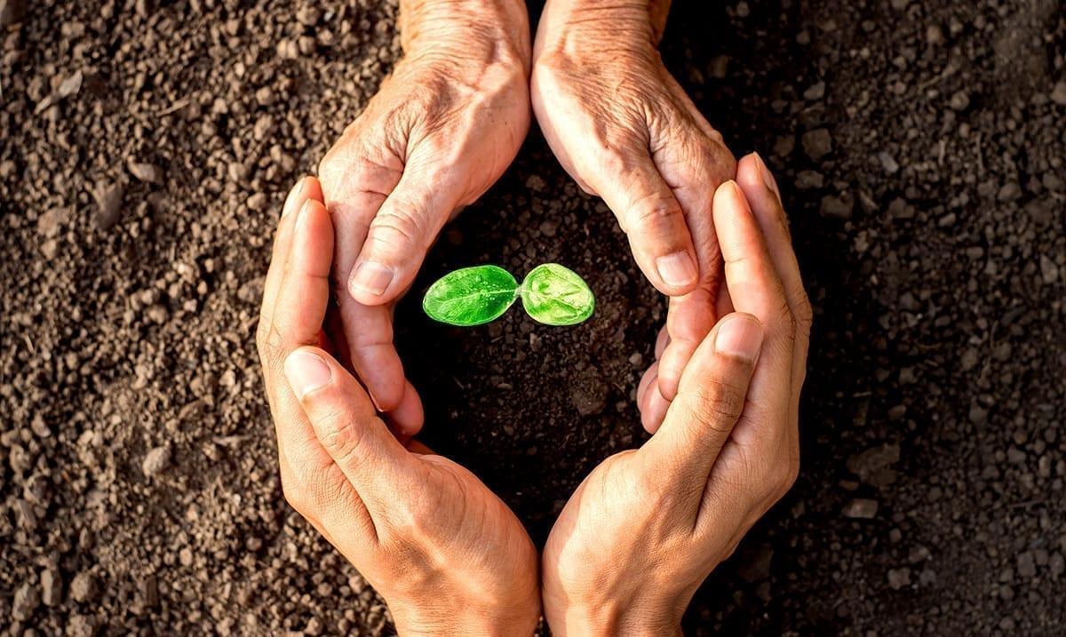 10 Overlooked Ways Gardening Can Help Your Mental Health