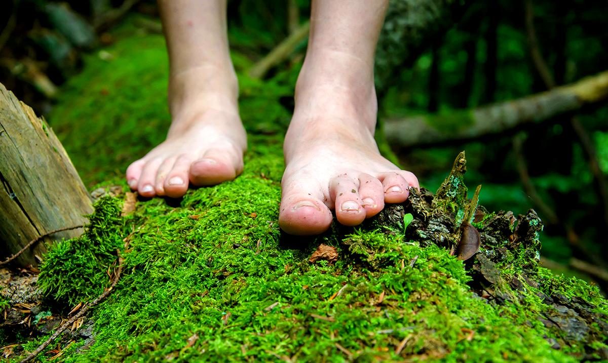 Grounding For A Better Life