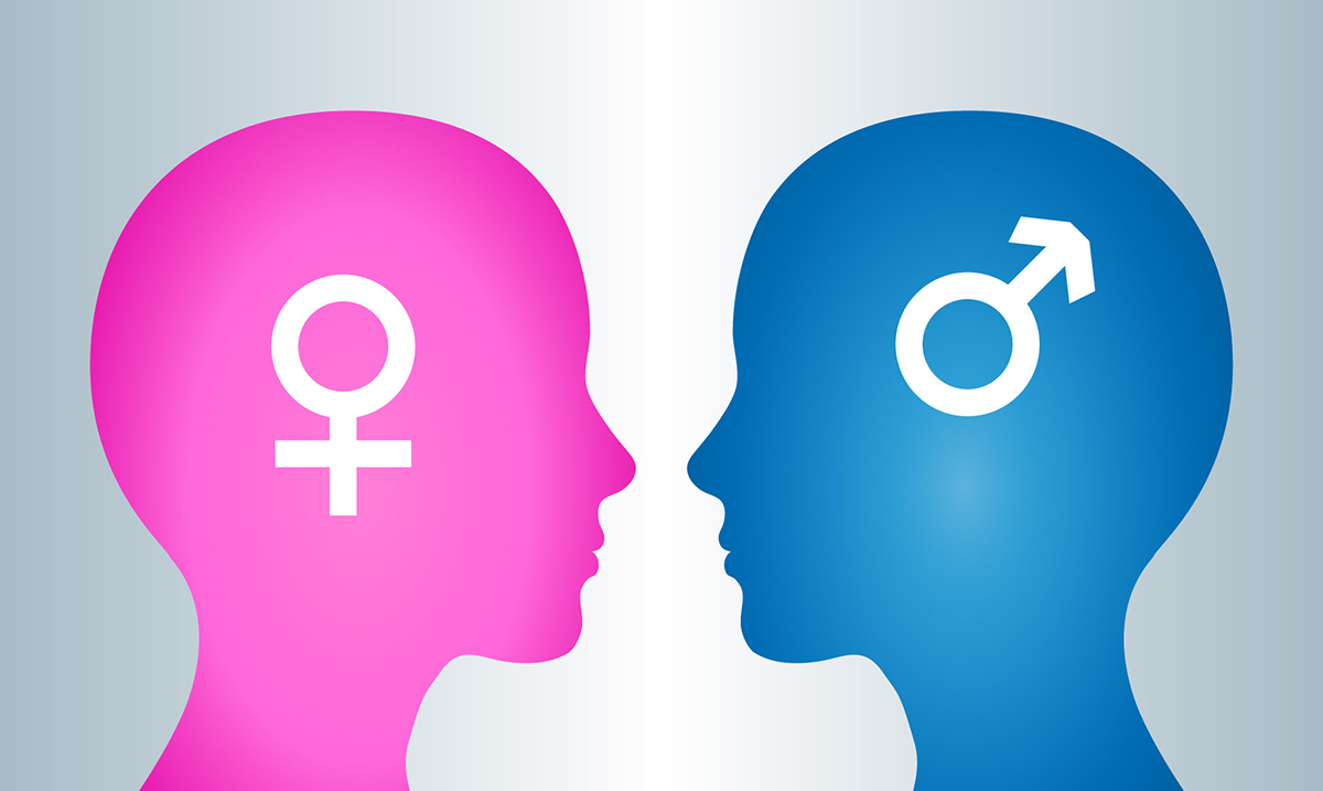 14 Interesting Differences Between The Male And Female Brains