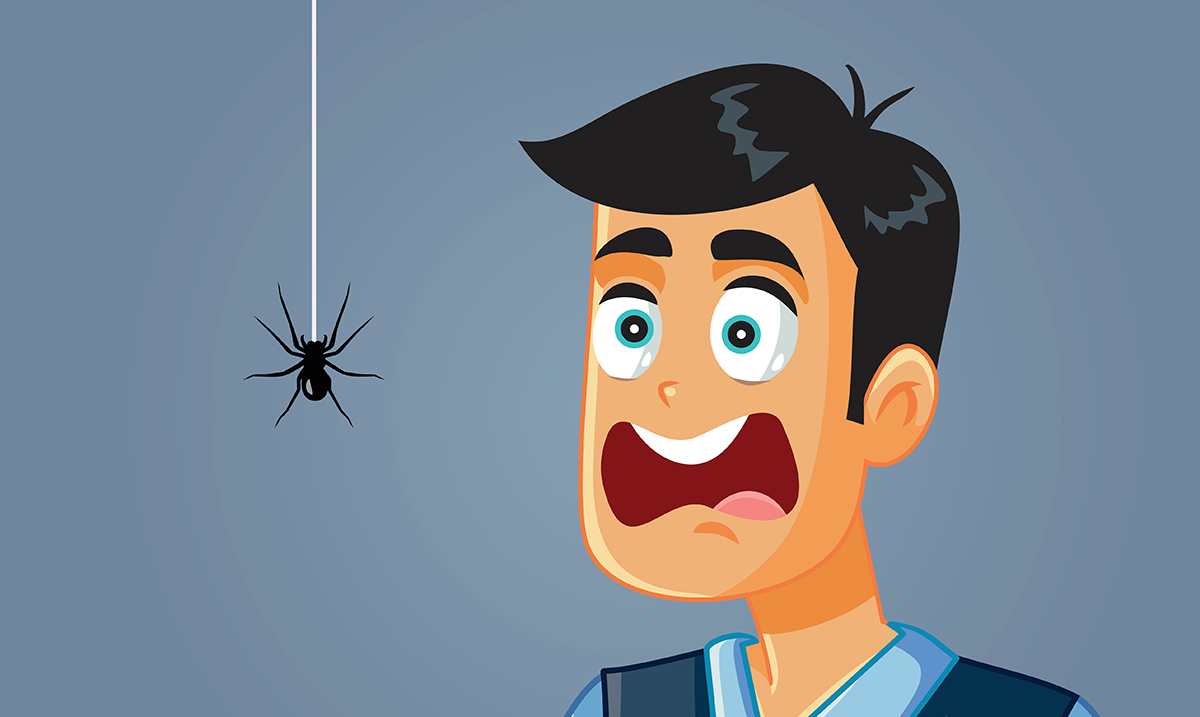9 Common Cleaning Habits That Attract Spiders
